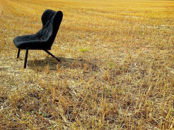 Кресло Foliage Kartell купить в Минске